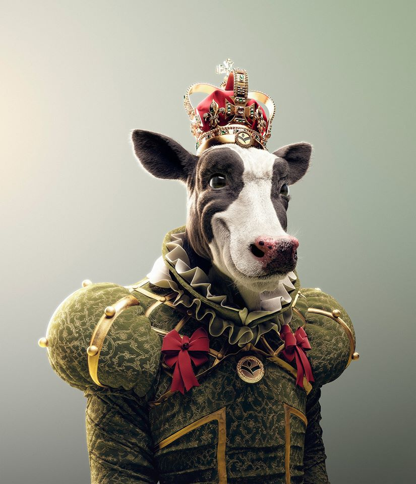 funny 3d model cow by diegomaricato