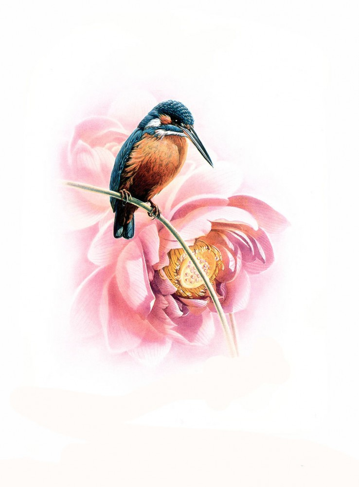 birds art painting 5