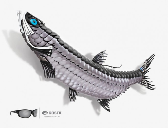 costa tarpon fish art ad