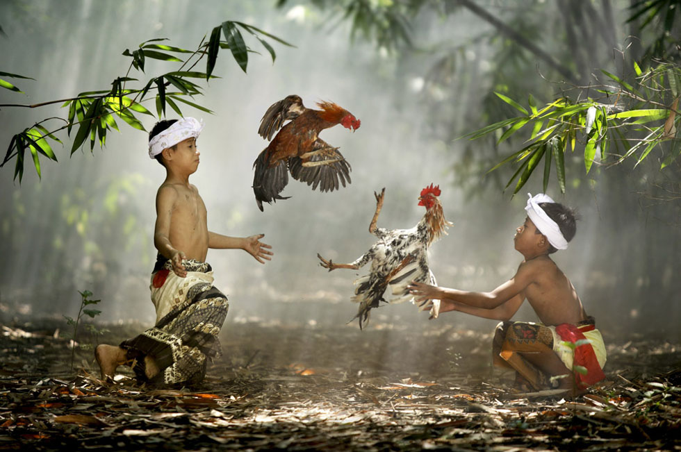 50 National Geographic Photos Award Winning Photography