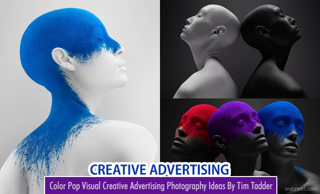 Color Pop Visual Delight Creative Advertising Photography Ideas By Tim Tadder