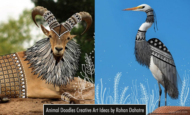Animal Doodles Creative Art Ideas by Rohan Dahotre