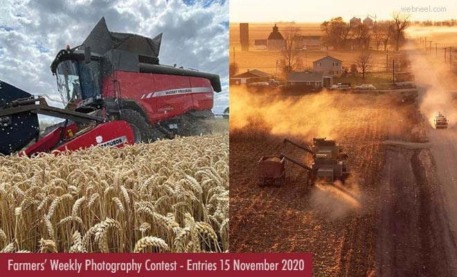 Farmers' weekly photography competition | Submit your Entries by 15 November 2020