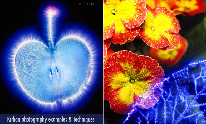 20 Best Kirlian photography examples and techniques for beginners