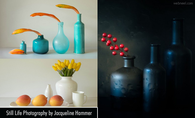 Unravelling Mysteries - 20 Still Life and Abstract Photography works by Jacqueline Hammer