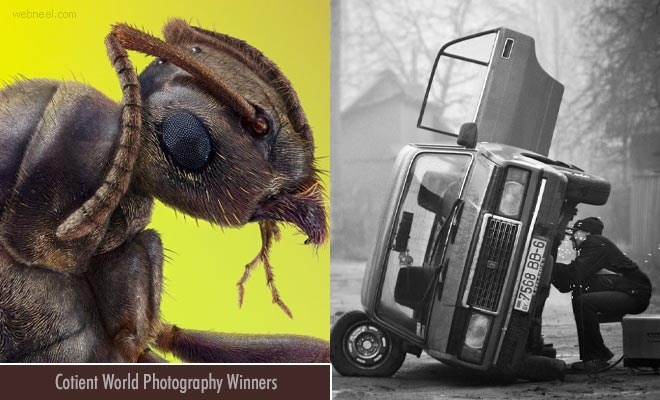 Cotient World Photography Announces Incredible Photography Awards