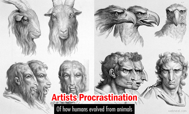 An artists Procrastination of how humans evolved from animals