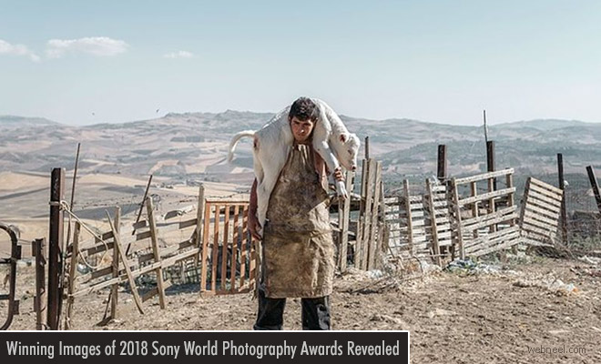 Awesome Winning Images of 2018 Sony World Photography Awards Revealed