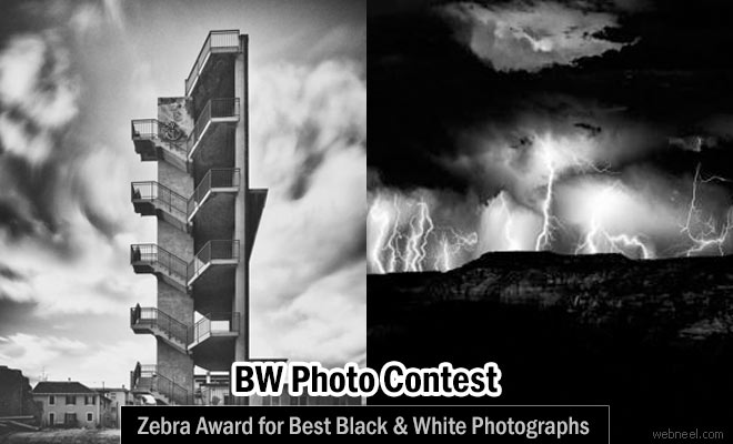 Black and White Photography Contest - Submit entries by 31 Dec 2016 and Win $2000 Zebra Award