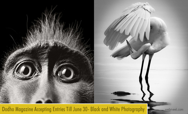 International Black and White Photography 2018 for Dodho Magazine - 30 June