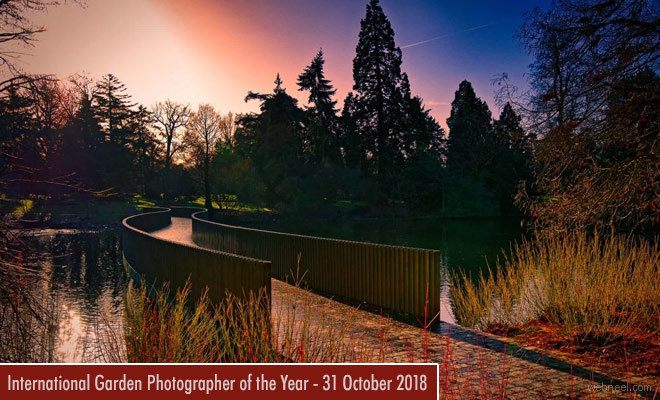 International Garden Photographer of the Year contest is open for entries - 31 October 2018