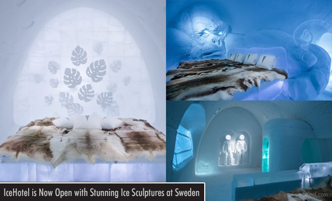 Sweden welcomes visitors to witness stunning Ice Sculptures at IceHotel
