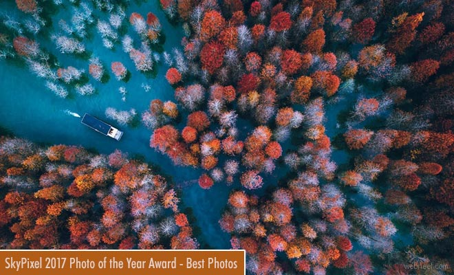 SkyPixel Photo of the Year | Award winning Photos for your inspiration