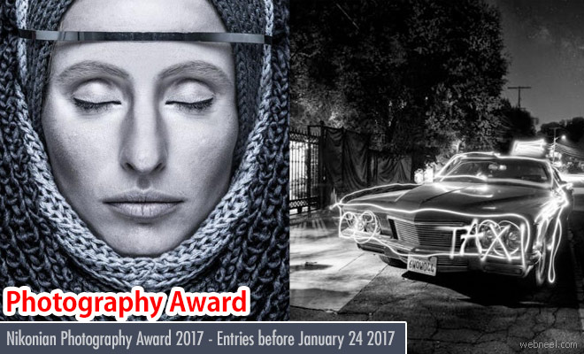 Nikonians Photography Awards 2017 calling for entries before January 24 2017