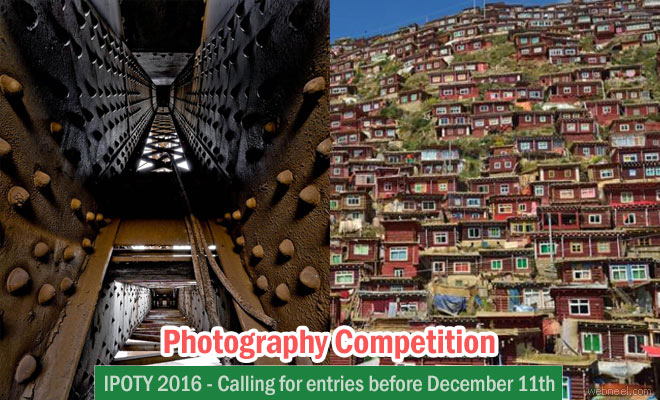 International Photographer of the Year - IPOTY 2016 your chance to win $4000