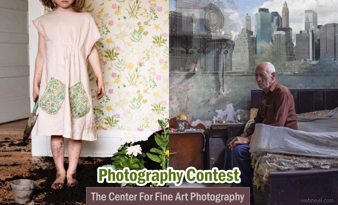 Animalia International photo contest submit your entries before December 14 2016