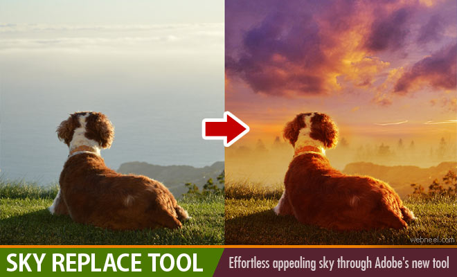 Bad news for Photo editors - Sky Replace feature from Adobe Photoshop