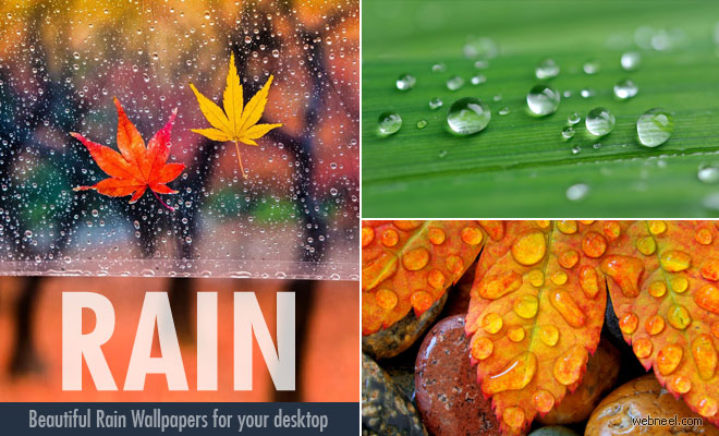 20 Beautiful HD Rain Wallpapers for your desktop