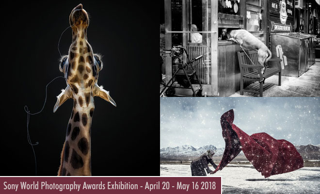 Sony World Photography Contest and Exhibition with stunning Photographs- 20 April - 16 May 2018