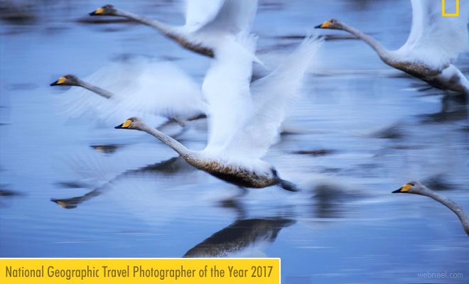 Winners of National Geographic Travel Photographer of the Year 2017