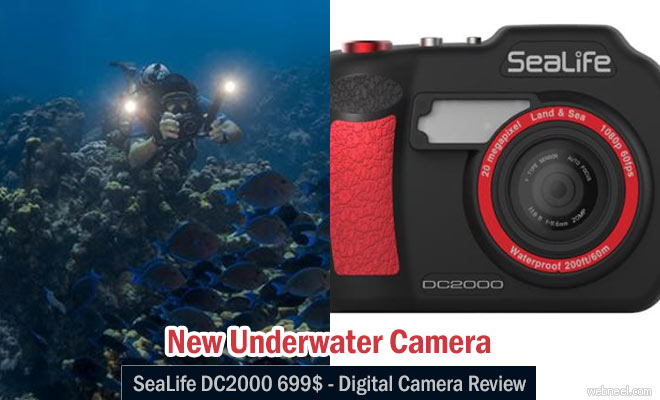 New Underwater Camera SeaLife DC2000 $699 - Digital Camera Review
