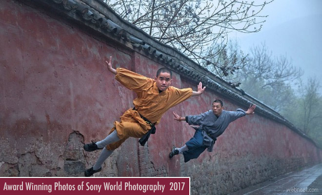 Award Winning Photos of Sony World Photography contest 2017