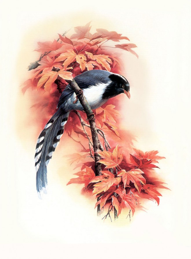 birds art painting
