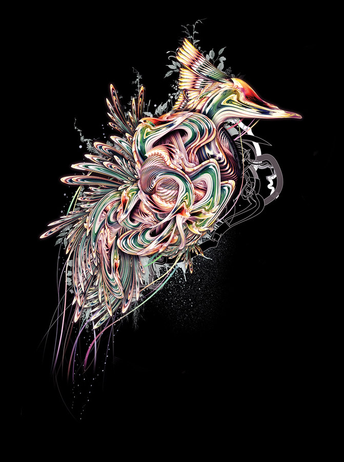 creative graphic design illustration