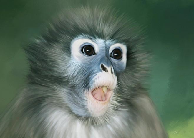 digital painting monkey