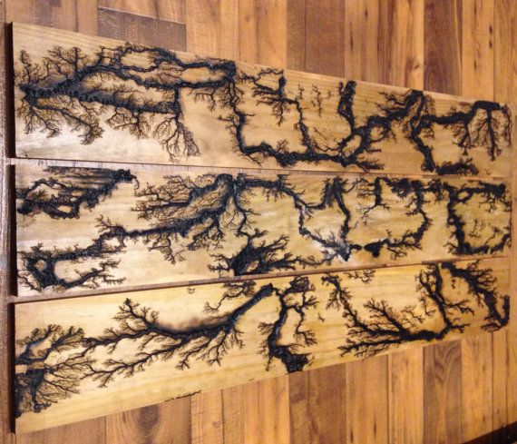 Lichtenberg Figures - Wood Burning art by The Backyard Scientist