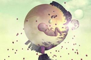 Still Life in a Circle - Inspiring Animation