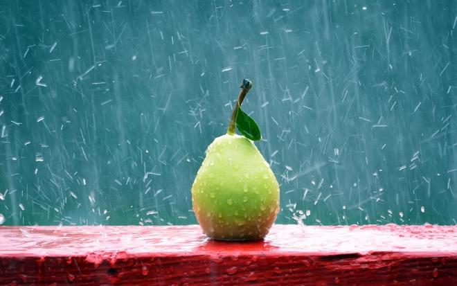 pear rain wallpaper