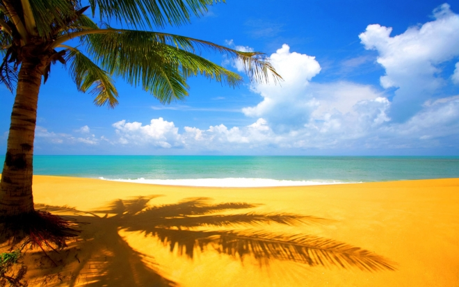 beach scenery wallpaper
