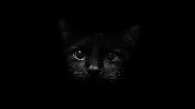 30 Beautiful Black Wallpapers For Your Desktop Mobile And Tablet Hd