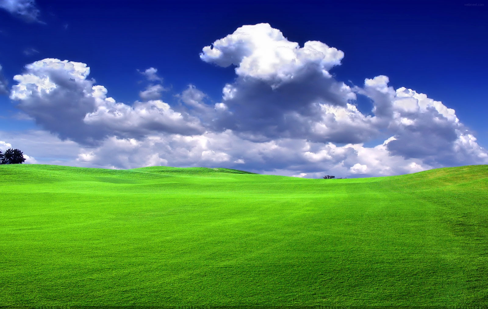 2 nature wallpaper grass